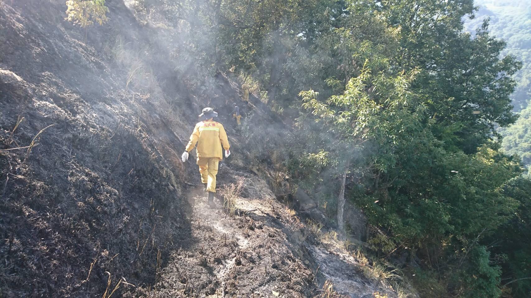 東勢林管處與空勤聯合 成功撲滅梨山森林火災 呼籲防火保平安