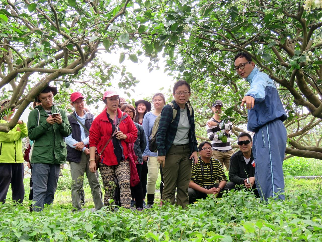 【柚子新樂園~柚說柚笑甜蜜蜜】農事體驗活動 開始報名囉!