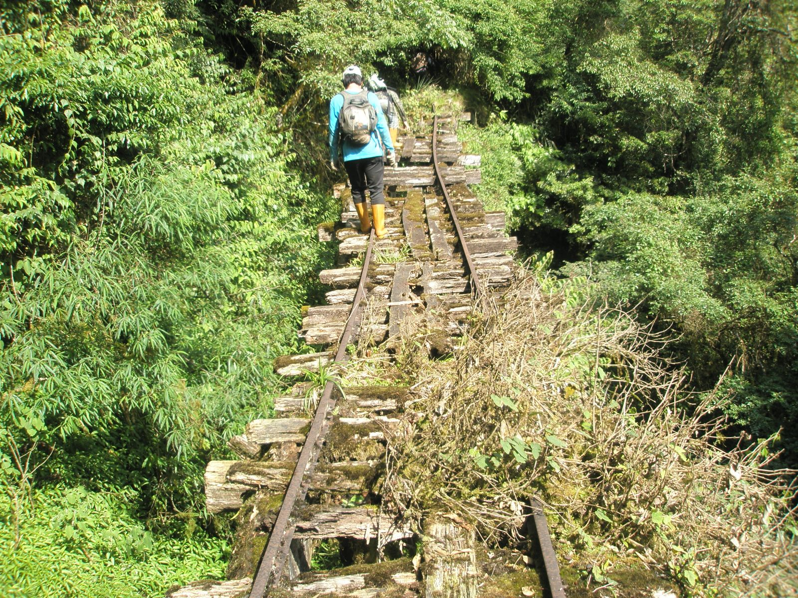 Walking nervously on the abandoned Mukwashan Harun Mountain Railway.