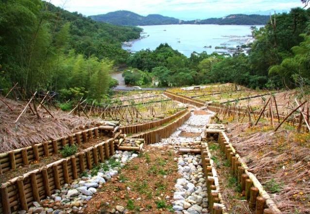 Ecological engineering-Wooden construction.