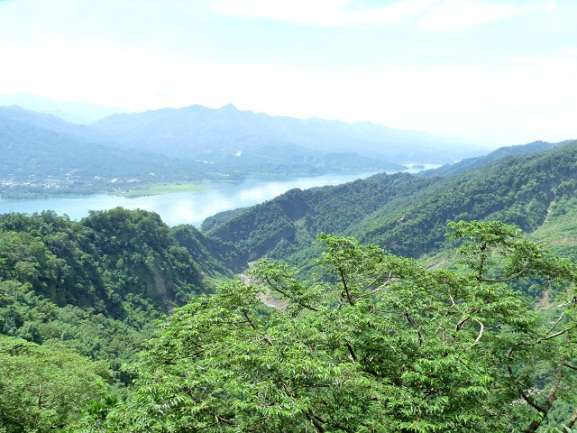 Soil Conservation Forest No. 1907 is composed of sandy soil and is located high on the hills.
