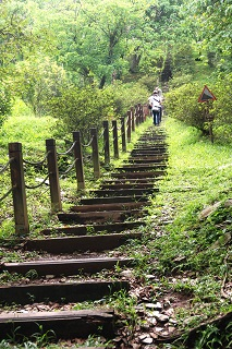 The Haohanpo Trail in Jhihben National Forest Recreation Area, Taitung.