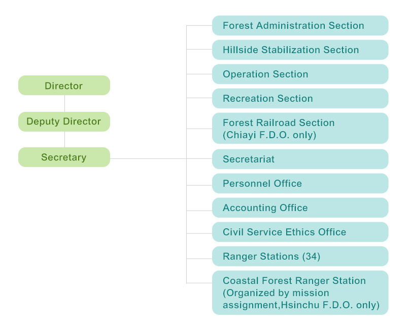 ORGANIZATION CHART OF FOREST DISTRICT OFFICE