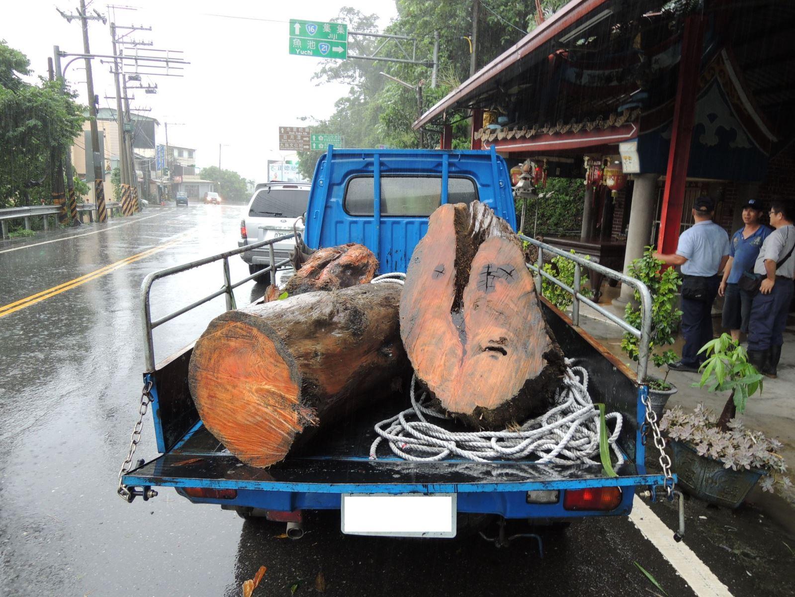 颱風過後撿拾漂流木 小心觸法